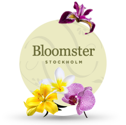 bloomster